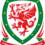 FAW Shoots for Goals with Engagesport